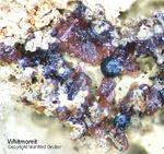Bayern Mineralien Hagendorf Süd Whitmoreit