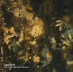 Harz Mineralien Juliushütte Astfeld Laurionit