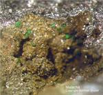 Harz Mineralien Juliushütte Astfeld Malachit