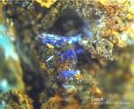 Harz Mineralien Frau Sophienhütte Langelsheim Linarit
