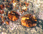 Harz Mineralien Ochsenhütte Wüstit