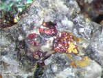 Mineralien Mansfelder Revier Oberhütte Eisleben Cuprit