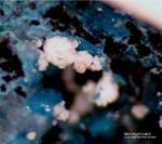 Mineralien Mansfelder Revier Oberhütte Eisleben Monohydrocalcit