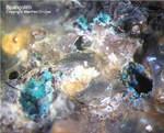 Mineralien Mansfelder Revier Oberhütte Eisleben Spangolith