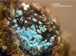 Mineralien Mansfelder Revier Kupferkammerhütte Hettstedt Devillin