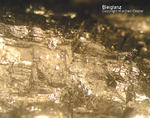 Harz Mineralien Oberschulenberg Glücksrad Bleiglanz Galenit