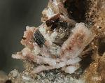 Eifel Mineralien Wannenköpfe Cristobalit